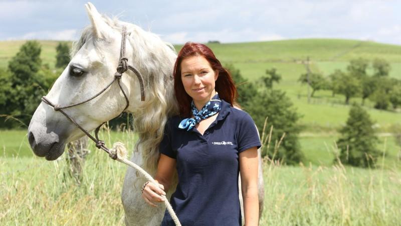 pferdeprofis