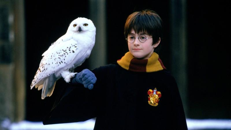 Harry Potter (Daniel Radcliffe)