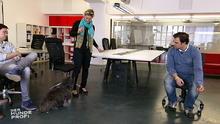 Hundekrawall im Büro: Martin Rütter will Erfolge sehen