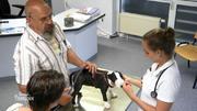 Hat Mini-Bullterrier-Welpe Emma etwas in der Nase?