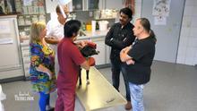 Gastfreundschaft für einen indischen Tierarzt