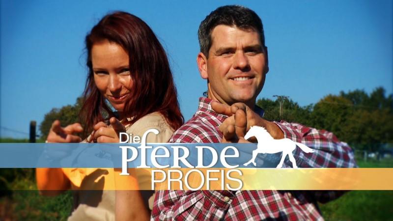 Vox Pferdeprofis